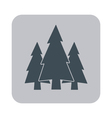 Flat icon Fir Trees vector image