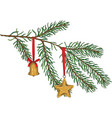 green fir branch with toys vector image
