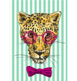 hand-drawn leopard vector image