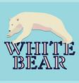 polar white bear logo design vector image