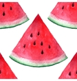 seamless watercolor hand drawn watermelon vector image