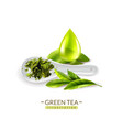 herbal green tea composition vector image