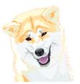japanese akita inu vector image vector image
