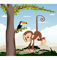 Monkey and a bird in a tree vector image vector image