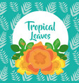 tropical leaves round banner flowers decoration vector image