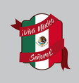 viva mexico insignia flag with decorative ribbon vector image