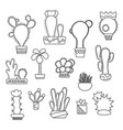 hand-drawn cactus on white vector image