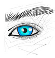 beautiful woman eye and brow vector image vector image