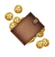 bitcoin wallet brown color abstract vector image