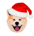 cute akita merry christmas and happy new year vector image vector image