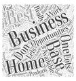 The Best Home Based Business Opportunities What vector image vector image