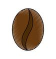 scribble coffee bean cartoon vector image