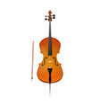 cello of stringed orchestra music vector image vector image