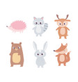 cute cartoon animals little bear raccoon deer vector image vector image
