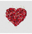 heart from cherry transparent background vector image vector image