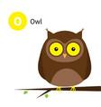 letter o owl zoo animal alphabet english abc vector image vector image