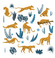 set leopards in various poses plants flowers vector image vector image