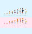 stages of growing up life cycle graph vector image