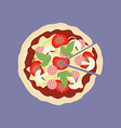Pizza food icon vector image