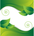 Leaves on a green background vector image
