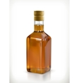 Whiskey in the bottle icon vector image