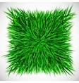 Background with square of grass vector image vector image