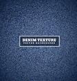 denim texture in blue vector image