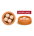 dumplings chinese national dish vector image vector image