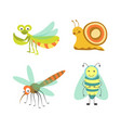 funny insects with cheerful faces isolated vector image vector image