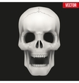 Human skull with open mouth vector image vector image