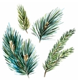 Raster watercolor fir-tree branches vector image vector image