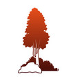 tree with bushes and rocks on red lines vector image vector image