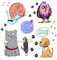 Cartoon animal characters colorful set vector image