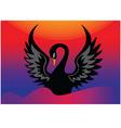 black swan vector image vector image