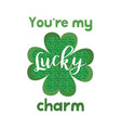 cute lettering phrase of st patrick day vector image