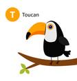 letter t toucan toco big beak exotic tropical vector image