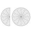 sliced citrus vector image