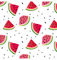 watermelon slices pattern summer fresh vector image vector image