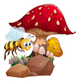 A bee near the giant red mushroom vector image vector image