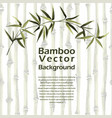 bamboo template with text place exotic vector image vector image