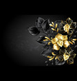 black background with black orchid vector image vector image