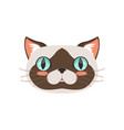 cute cat head funny cartoon animal character vector image vector image