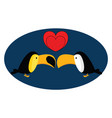 toucan in love on white background vector image