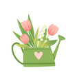 bouquet of tulips in green watering can hello vector image vector image