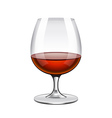 Brandy in glass isolated on white vector image
