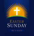 cross logo blue on sun vector image vector image