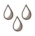 Drops symbol vector image