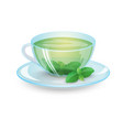 green tea with mint in a transparent cup isolated vector image