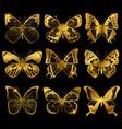 shiny golden butterflies with light effect vector image