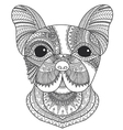 French bulldog coloring vector image